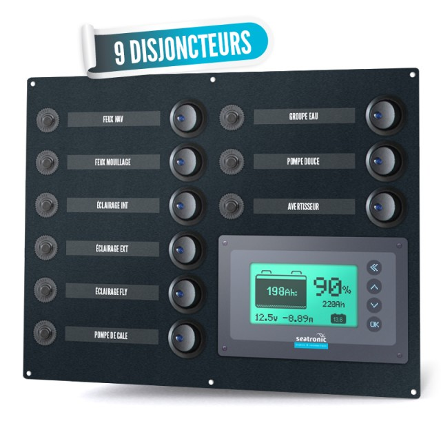 Table 9 Circuit breakers and a seatronic manager